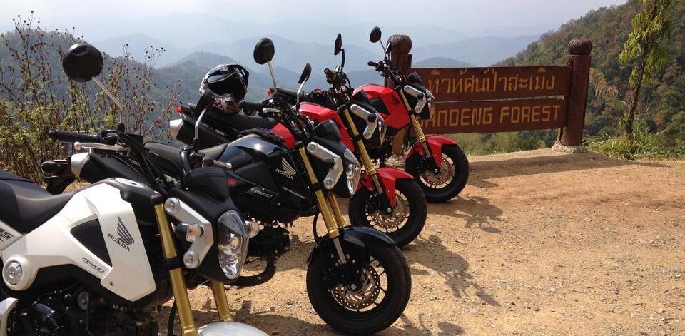Honda MSX 125 Chiangmai - mini4temps.fr