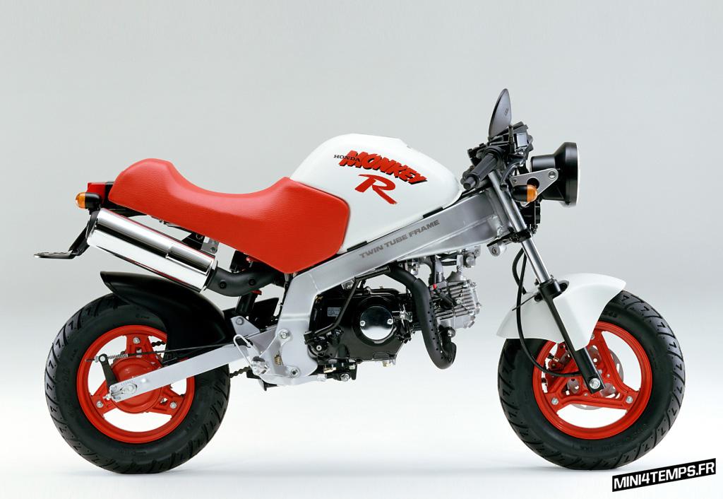 Honda Monkey R Blanc et Rouge - mini4temps.fr