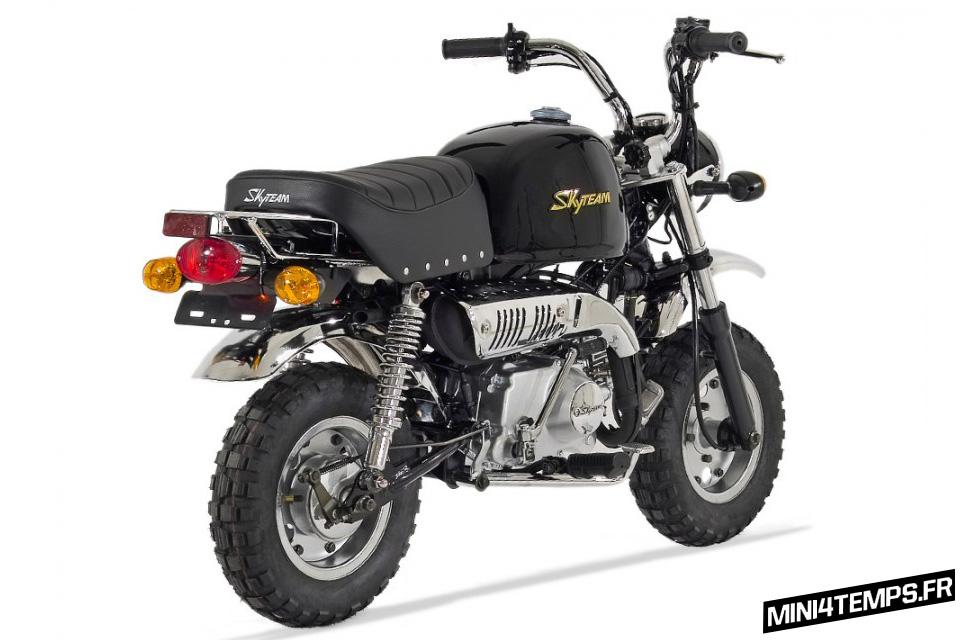 Skyteam Gorilla, la réplique du Honda Gorilla - mini4temps.fr