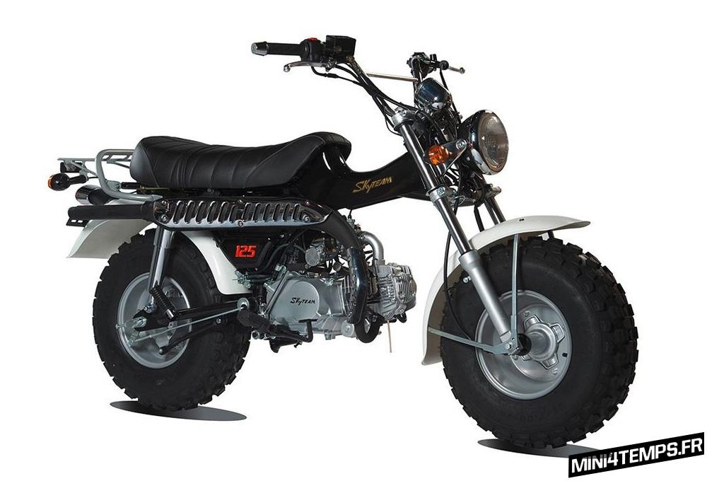 Skyteam T-Rex, réplique du Suzuki Vanvan - mini4temps.fr