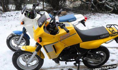 Yamaha TDR Mini 50 jaune Yamaha minibikes - mini4temps.fr