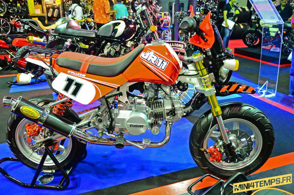 Stallions Minibikes - mini4temps.fr