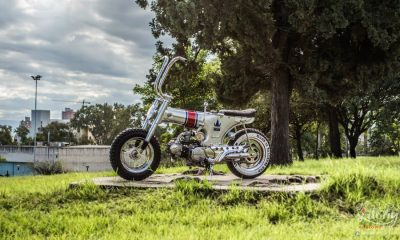 Honda Dax De Lujo by Lucky Custom Cordoba - mini4temps.fr