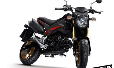 Les nouveaux Honda MSX 125 modèles 2015 - mini4temps.fr