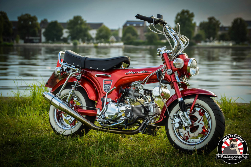 Honda Dax Candy Ruby Red - mini4temps.fr