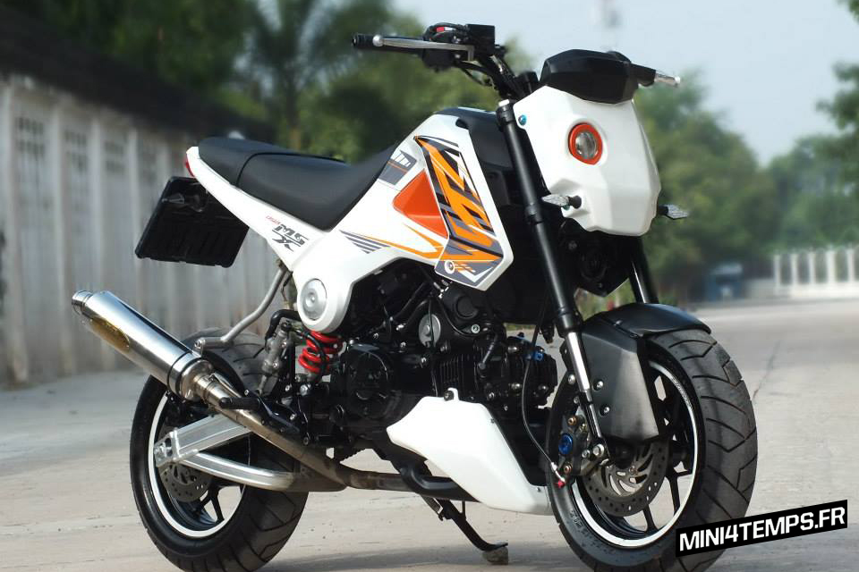 Awesome Honda MSX 125 by Petex - mini4temps.fr