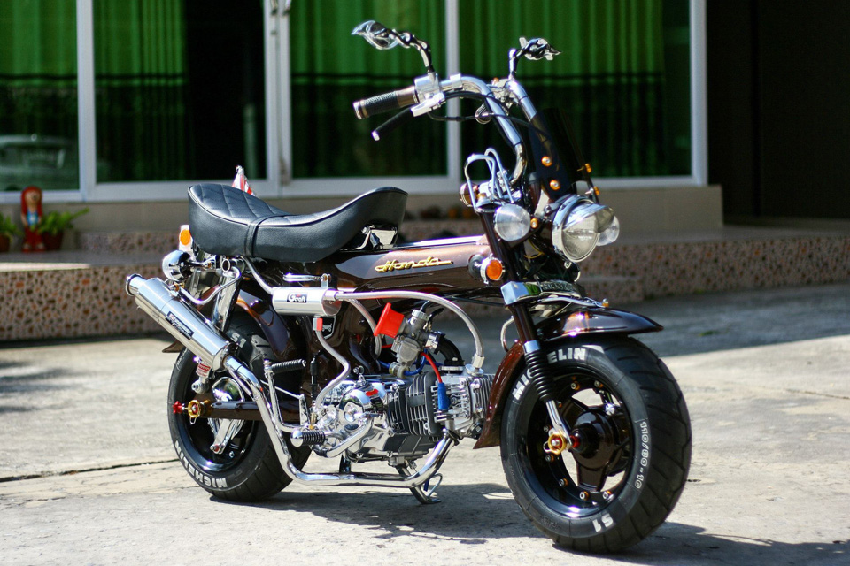 All L Shop Honda Dax - mini4temps.fr