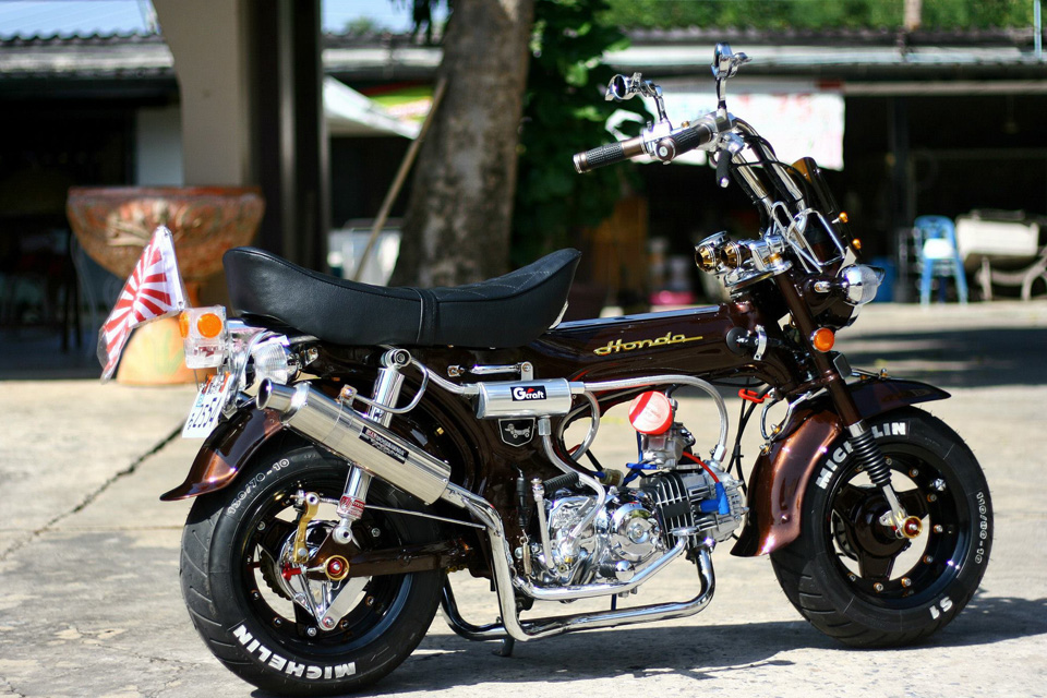 All L Shop Honda Dax - mini4temps.fr