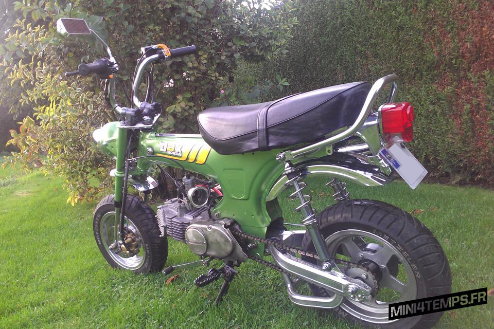 Le Dax Vert de Steph - mini4temps.fr