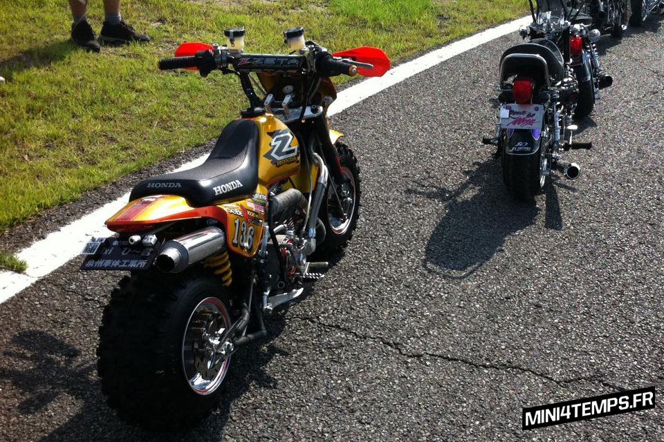 Le Fat Honda Z50R Gold de Route51 - mini4temps.fr