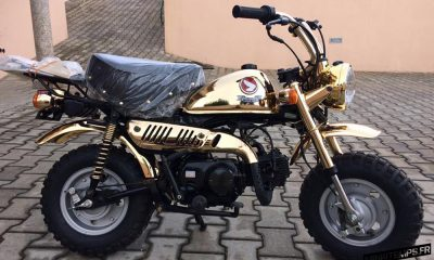 Honda Monkey Z50J Gold Limited Edition - mini4temps.fr