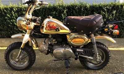 Honda Monkey Gold 1984 Limited Edition - mini4temps.fr