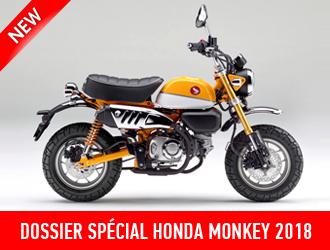 Honda Monkey 125 2018