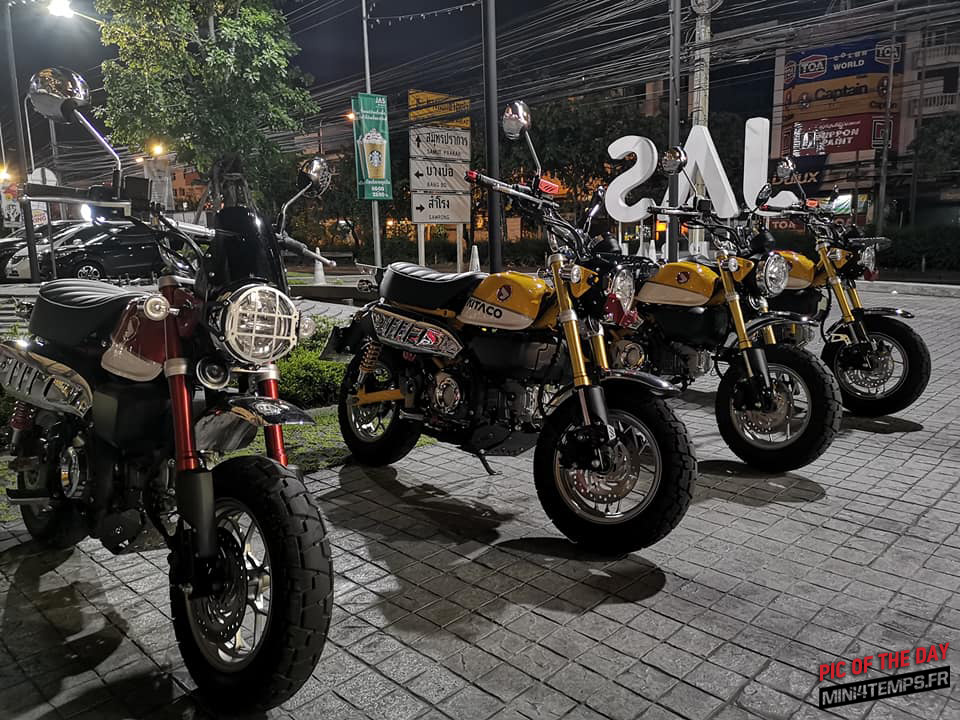 Pic of the day ! Honda Monkey 125 Club in Thailand - mini4temps.fr