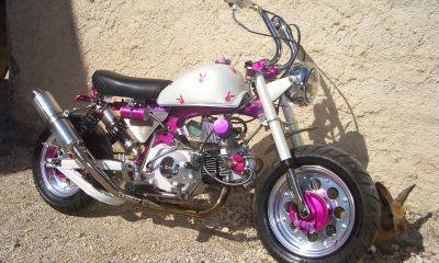 "Le Honda Monkey Z50J2 ""Playboy Girl"" de Volksben - mini4temps.fr"