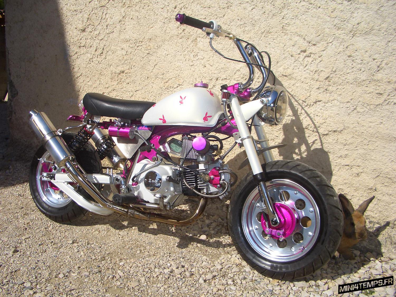 "Le Honda Monkey Z50J2 ""Playboy Girl"" de Volksben - mini4temps.fr"
