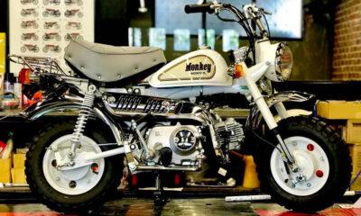Honda Monkey White Special 1988 - mini4temps.fr