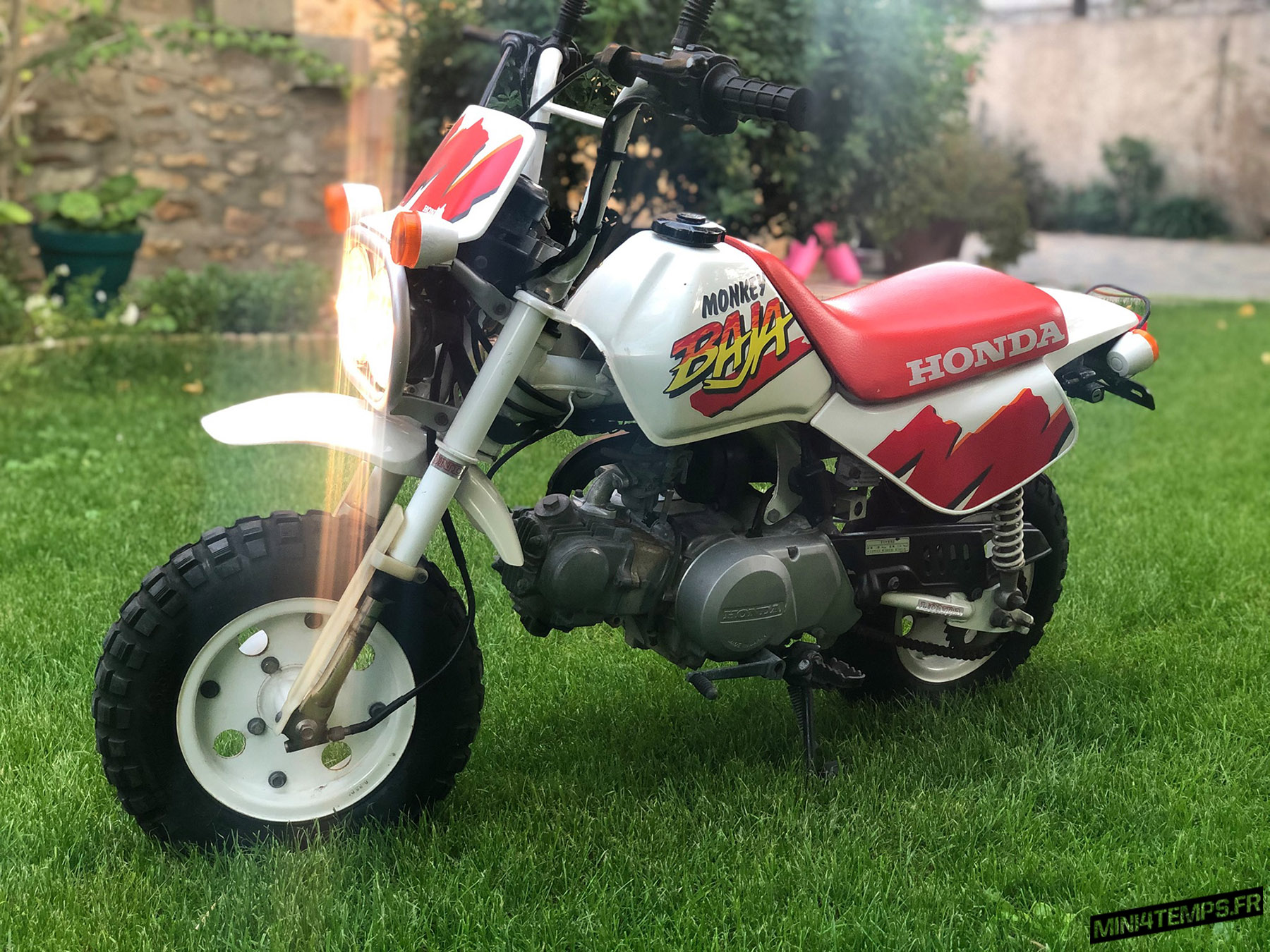 Honda Monkey Baja en TBE - mini4temps.fr