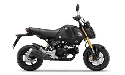 Honda dévoile le nouveau MSX 125 / Grom 125 2021 - mini4temps.fr