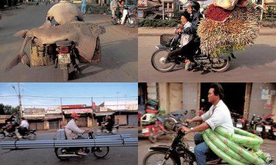Honda Cub Transportation - mini4temps.fr
