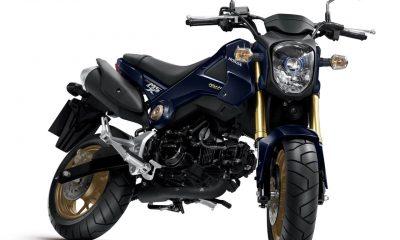 Choix des pneus pour le Honda MSX 125 - mini4temps.fr