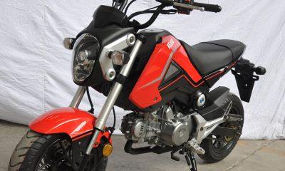 XGJAO Honda MSX 125 Chines Replica - mini4temps.fr