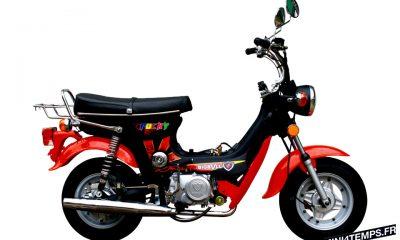 Bigbull Motorcycle Honda Chaly Réplica Bigbull Pocky - mini4temps.fr
