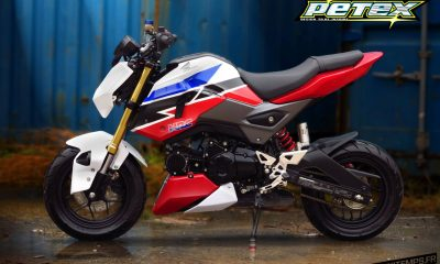 Honda MSX 125 SF Tri-color Petex Edition - mini4temps.fr