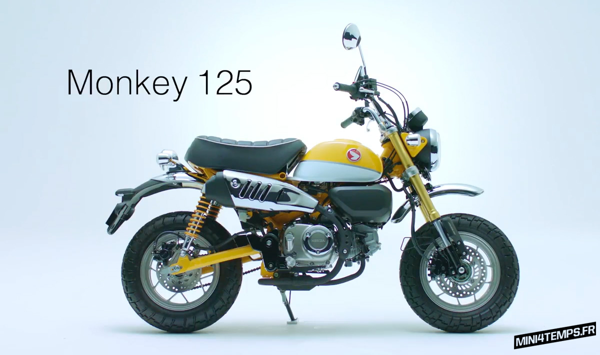 le nouveau monkey 125 en vid o le site des passionn s de mini4temps honda et. Black Bedroom Furniture Sets. Home Design Ideas