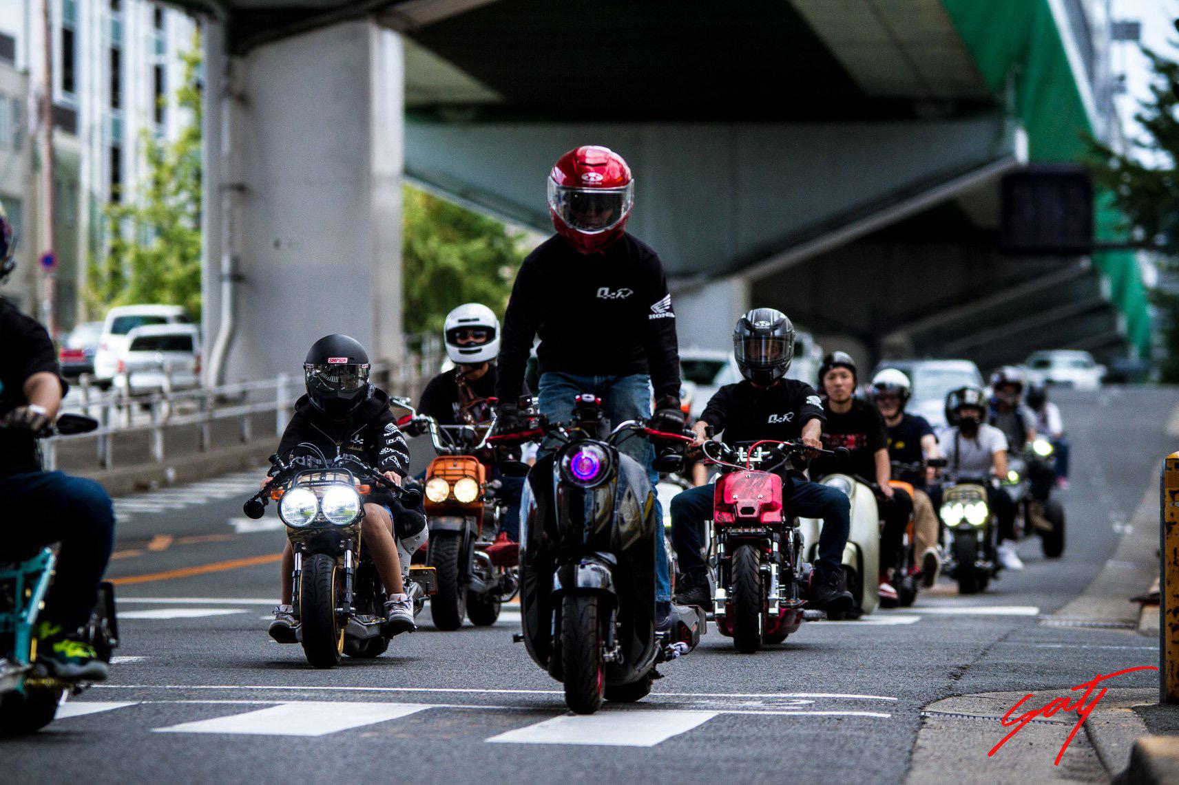Zoomer/Ruckus Meeting in Kansai - mini4temps.fr