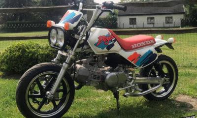 A VENDRE : le Honda Monkey Baja de Bernard - mini4temps.fr